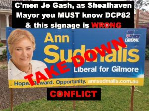 Ann Sudmalis Take Down Sign