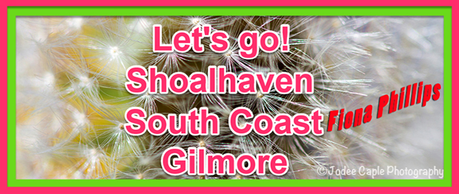 Fiona Phillips (Boyd) – Let's go! Shoalhaven, South Coast, Gilmore.